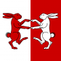 media:heraldry:personal_heraldry:enid_aurelia_of_the_tin_isles_badge.png